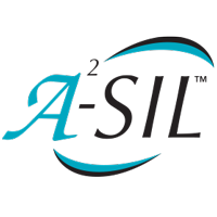 ASIL Functional Safety Systems